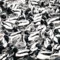 Massor av änder i svartvitt i Nynäshamn
