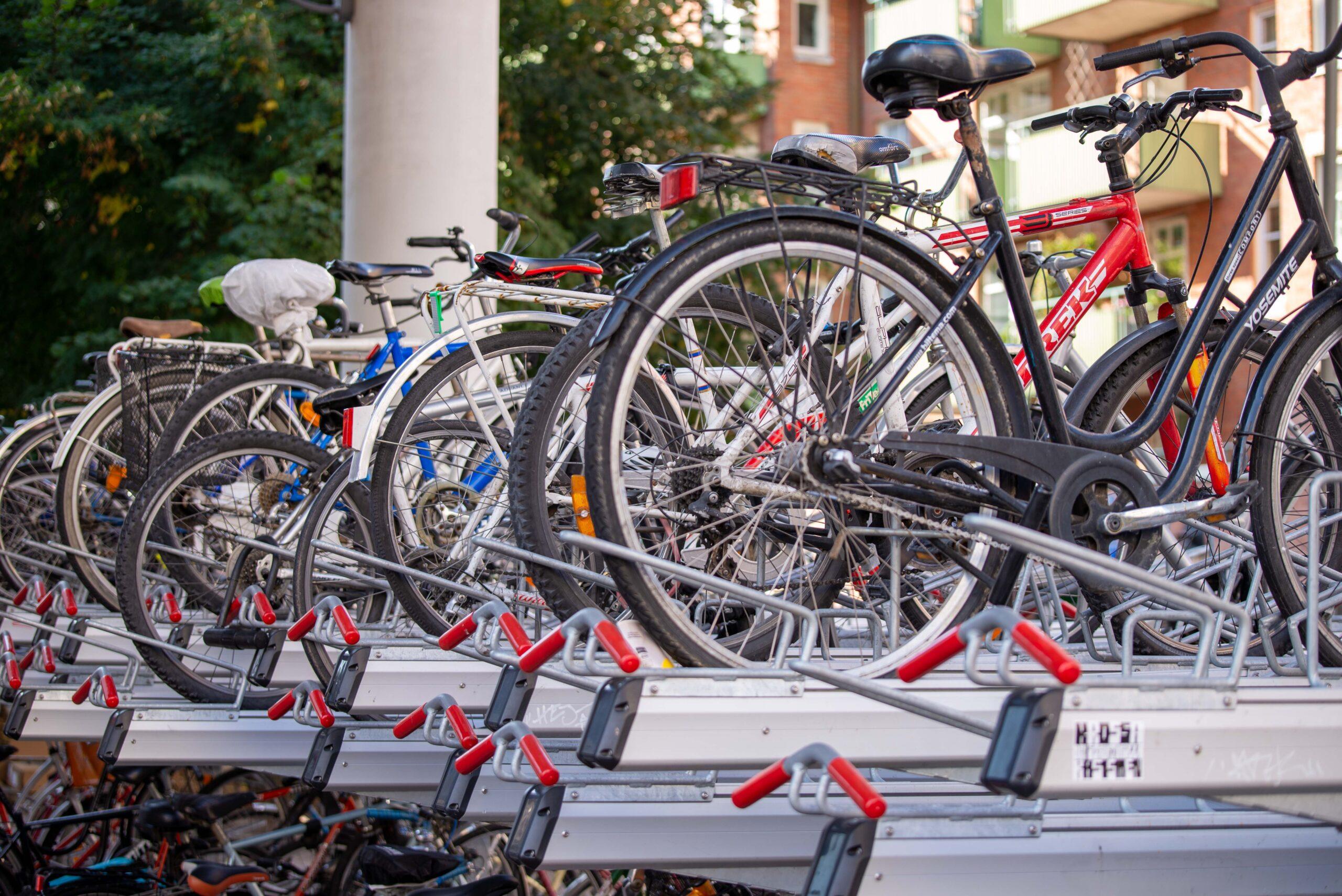cyklar i ställ på söder